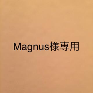 [Magnus様専用] Bad Cat 2-Tone 箱付き美品!(ギターアンプ)