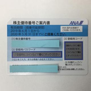 エーエヌエー(ゼンニッポンクウユ)(ANA(全日本空輸))のANA株主優待券 最新券 1枚 2019年6月1日から2020年5月31日まで(その他)