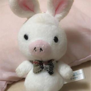 キスマイフットツー(Kis-My-Ft2)のブタウサギ キーホルダー 美男ですね(ぬいぐるみ)