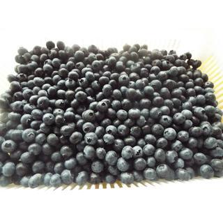 ☆ハイブッシュ系小粒・中粒冷凍ブルーベリー2kg☆送料込み価格(フルーツ)