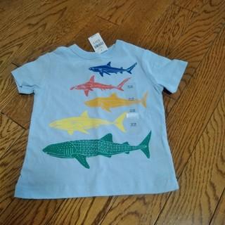 ギャップ(GAP)のTシャツ 魚 サメ(Tシャツ)