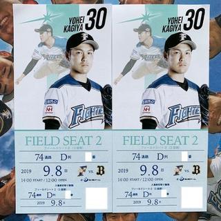 ホッカイドウニホンハムファイターズ(北海道日本ハムファイターズ)のフィールドシート3塁側 最前列 通路側 9/8(日) 札幌ドーム 2枚(野球)