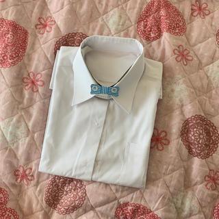 シマムラ(しまむら)のスクールYシャツ(ブラウス)