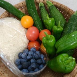 無農薬キュウリ、ピーマン、トマトとブルーベリー家庭菜園からのお届け物(野菜)