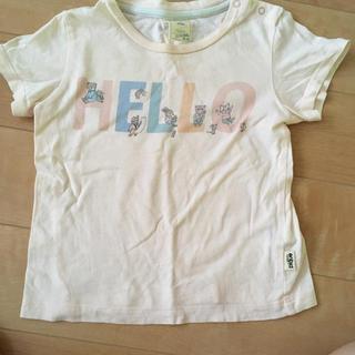 ジェラートピケ(gelato pique)のジェラートピケ(Tシャツ)