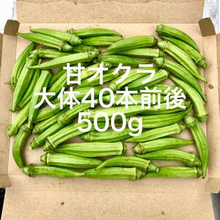 鹿児島産甘オクラ箱込み500g^_^(野菜)