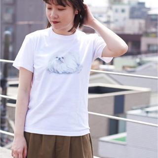 アイアムアイ(I am I)のI am I ONEROOM ペギニーズ Tシャツ(Tシャツ(半袖/袖なし))