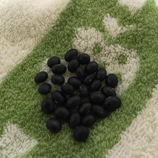 アントシアニンたっぷりの黒大豆の種30粒 枝豆としても食べれます(o^^o)(野菜)