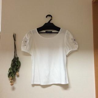 エムズグレイシー(M'S GRACY)の専用です。(Tシャツ(半袖/袖なし))