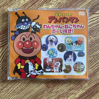 アンパンマン - アンパンマン わんちゃん、ねこちゃんだーいすき! DVD