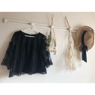 ミスティウーマン(mysty woman)のトップス(Tシャツ(半袖/袖なし))