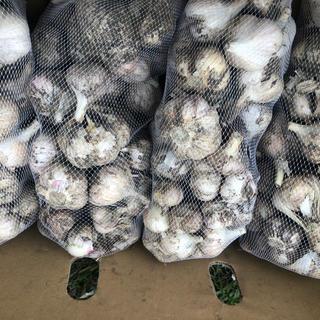 青森県産 福地ホワイト にんにく2キロ送料無料(野菜)