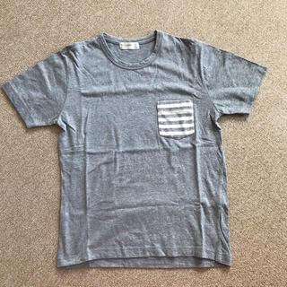 バックナンバー(BACK NUMBER)のバックナンバー Tシャツ(Tシャツ/カットソー(半袖/袖なし))