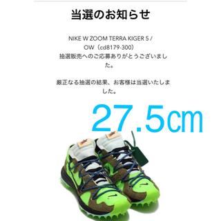 ナイキ(NIKE)のNike × off-white ズーム テラ カイガー(スニーカー)