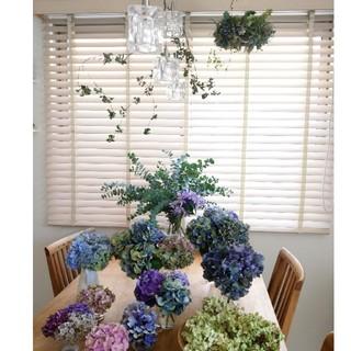 紫陽花のフライングリース(オーダー品)(ドライフラワー)