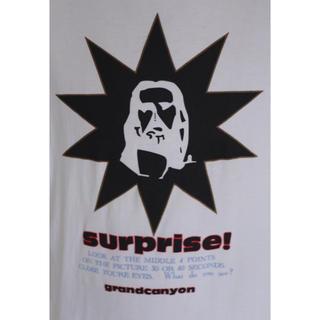 グランドキャニオン(GRAND CANYON)のGrand Canyon グランドキャニオン オリジナルTシャツ (Tシャツ/カットソー(半袖/袖なし))