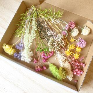 花材セット ドライフラワー 茎付き 詰め合わせ  スワッグ、ハーバリウムなどに♪(ドライフラワー)