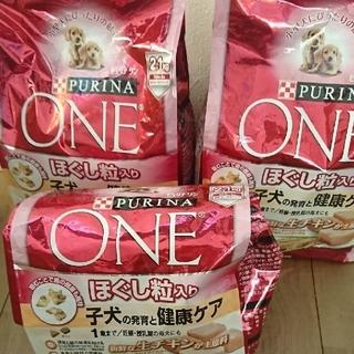 ネスレ(Nestle)の新品!ネスレピュリナワン 子犬用 5.6キロ(ペットフード)