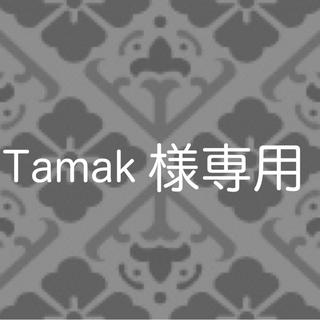 インディアン(Indian)の【値下げ】ジェイソン タカラ 14K メイズリング②(リング(指輪))