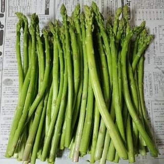(限定値下げ!)佐賀県産グリーンアスパラ1.5キロ(訳あり)(野菜)