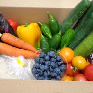 無農薬夏野菜とブルーベリー、自然栽培米家庭菜園からのお届け物(野菜)