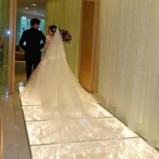 Vera Wang - ウェディング ベール 結婚式 ロングベール スパンコール