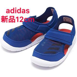 adidas - 処分価格 新品12cm アディダス adidas キッズ アクアシューズ ベビー