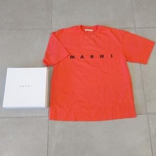 マルニ(Marni)の今期完売MARNIロゴオレンジTシャツ美品38(Tシャツ(半袖/袖なし))