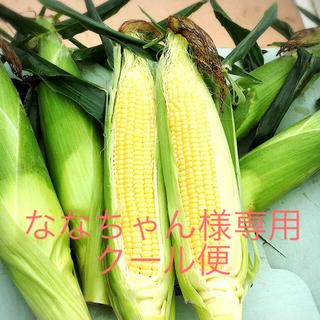あまーい朝どりトウモロコシ  特別価格(野菜)