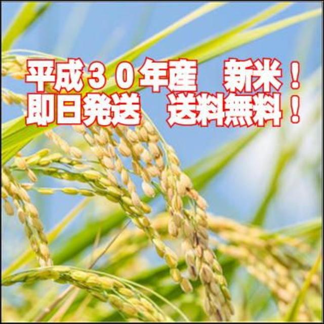 厳選!群馬県みなかみ産 コシヒカリ  精米10 ㎏ 食品/飲料/酒の食品(米/穀物)の商品写真