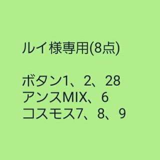 ルイ様専用 ボタン【牡丹①】黒牡丹 種子5粒(その他)