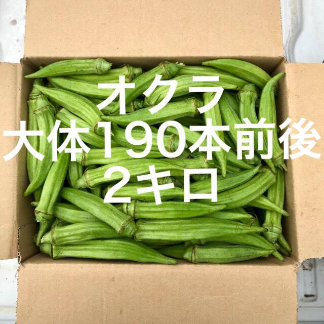 鹿児島産オクラ2キロ 食品/飲料/酒の食品(野菜)の商品写真