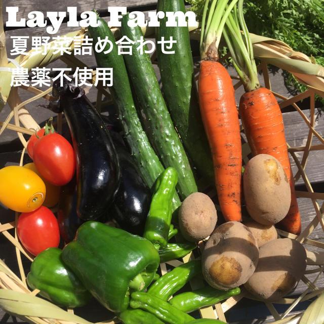 夏野菜詰め合わせ 80サイズダンボール 食品/飲料/酒の食品(野菜)の商品写真