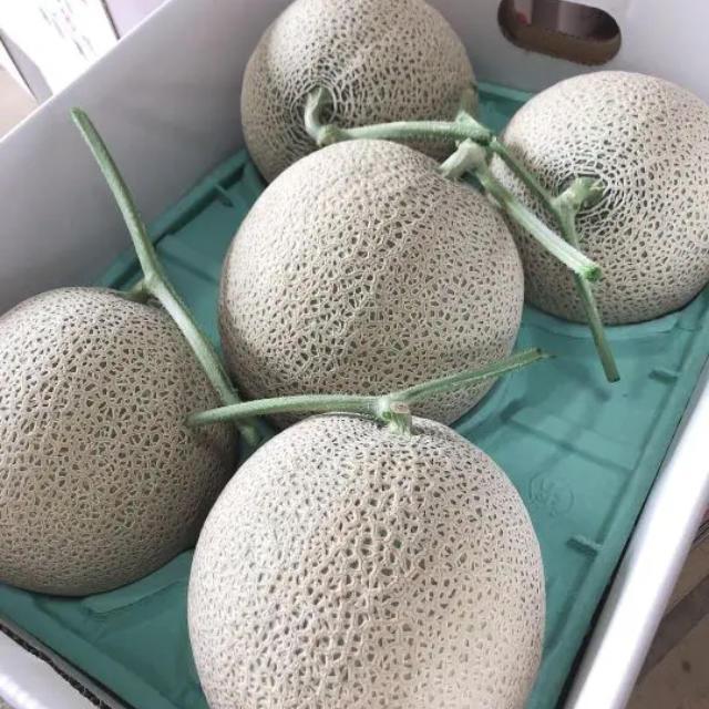 富良野メロン 4.5.6玉 8キロ 食品/飲料/酒の食品(フルーツ)の商品写真