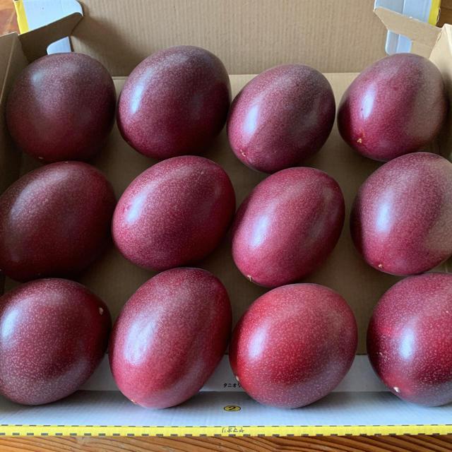 奄美大島産 パッションフルーツ 食品/飲料/酒の食品(フルーツ)の商品写真