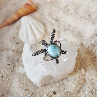 Larimar Turtle Ring #1(リング(指輪))