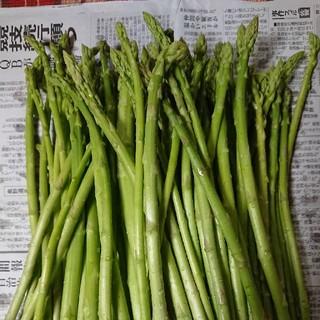 佐賀県産グリーンアスパラ1.5キロ(訳あり)(野菜)