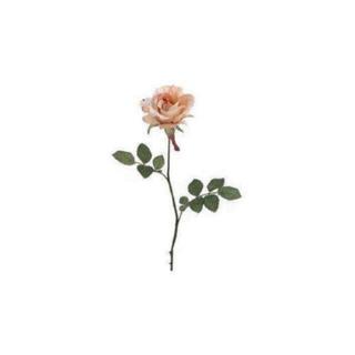 ツモリチサト(TSUMORI CHISATO)のお花柄 ワンピース(ひざ丈ワンピース)