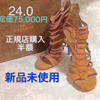 COACH - 歩きやすい美脚サンダル 37.5 ナチュラルベージュ グラデュエーター レース