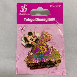 Disney - セレブレイト東京ディズニーランド ピンバッチ