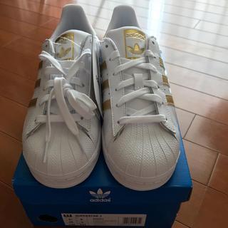 adidas - アディダス スーパースター  ホワイト×ゴールド 24