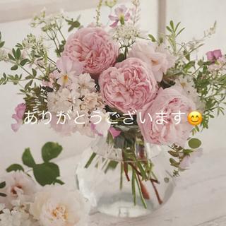 エムズグレイシー(M'S GRACY)のピンク スカート 38(ひざ丈スカート)