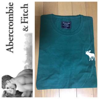 Abercrombie&Fitch - ◎L◎新品正規品◎アバクロ◎ビックアイコンUネックTシャツ◎送料込