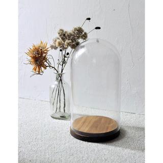 IKEA - IKEA  人気 HARLIGA ガラスドーム ウッドベース付き27 cm