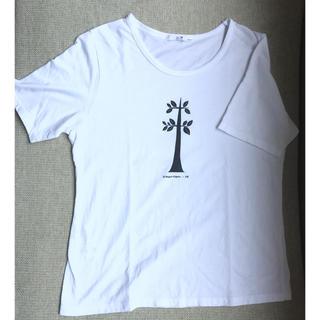 ニジュウサンク(23区)の23区 Tシャツ サイズ44 (カットソー(半袖/袖なし))