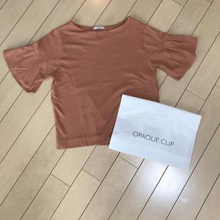 オペークドットクリップ(OPAQUE.CLIP)のオペークのコットンのカットソー(カットソー(半袖/袖なし))