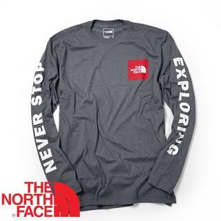ザノースフェイス(THE NORTH FACE)のノースフェイス Collegiate LS ロンT ロゴ 海外限定 L(Tシャツ/カットソー(七分/長袖))