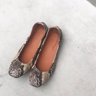 TODAYFUL - todayful Python Flat Shoes パイソンフラットシューズ