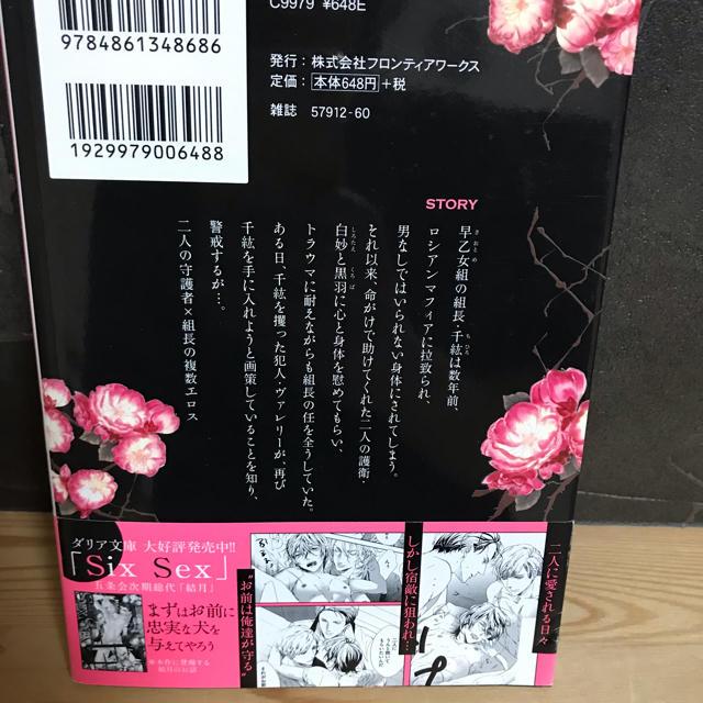 Six Sex シックスセックス 北沢きょう 西野花 ハードBL エンタメ/ホビーの漫画(ボーイズラブ(BL))の商品写真