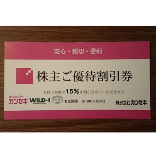 スノーピーク(Snow Peak)のwild-1 カンセキ 15%off 優待券(ショッピング)
